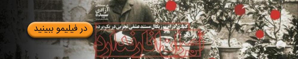 مستند تهران انار ندارد